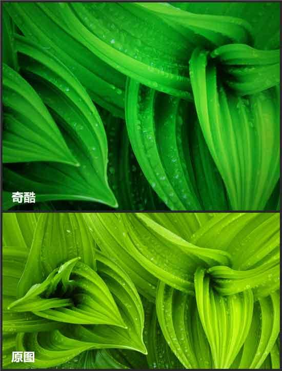 綠色屏幕測試
